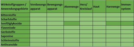 Heilpflanze Kapuzinerkresse Tropaeolum Glucosinolate Polyphenole Senfölglykosid antibakteriell antiviral Atemwegsinfektion Harntrakt