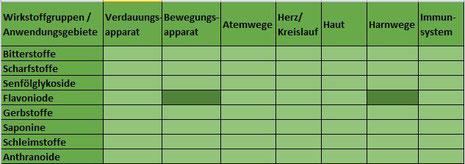 Heilpflanze Brennnessel Urtica harntreibend stoffwechselaktivierend Frühjahrskur rheumatisch-entzündlich Bewegungsapparat Gelenke Harnwege Blase