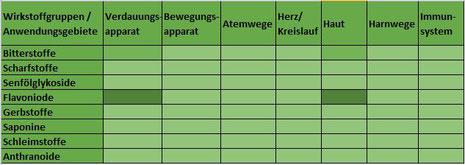 Heilpflanze Schafgarbe Achillea millefolium ätherisches Öl Bitterstoffe leberschützend Gallensäfte Magen-Darm krampflösend Menstruationsbeschwerden