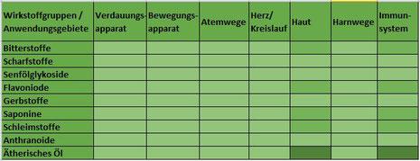 Heilpflanze Ringelblume Calendula ätherisches Öl Saponine Schleimstoffe Sterole Wundheilung antibakteriell antiviral Immunsystem