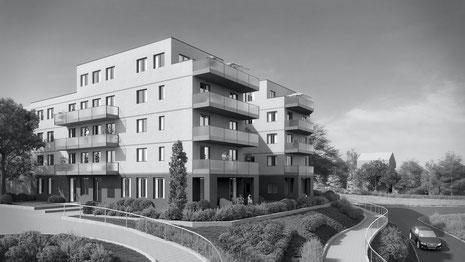 Der Immobilienmakler Matthias Pfeifer vermittelt Immobilien im Rhein-Main-Gebiet. Neubauprojekt in Rodgau Nieder-Roden mit 35 Wohnungen, Penthouse und Parkdeck