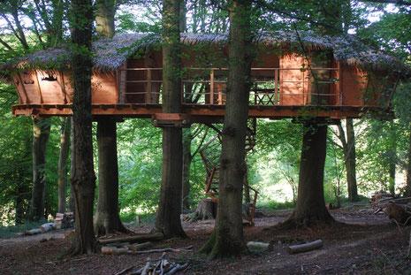Grande cabane double, à 4 m de hauteur, sur trois hêtres centenaires, sécurisée par des filets, accès par un escalier en colimaçon, terrasse de 30 m², semi-couverte et traversante, Normandie, La Chaussée.