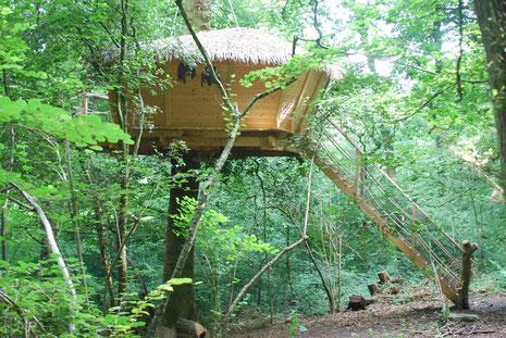 Cabane à 5 mètres avec terrasse sécurisée par des filets, pour une famille de 3 à 4 personnes. Accès : escalier droit sécurisé par des filets.