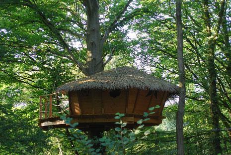 Cabane perchée à 8 m, accessible par un escalier en colimaçon puis par une passerelle de 15 m de long sécurisée par des filets et une échelle de 5 barreaux.