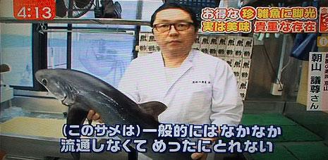 ニタリザメ 寿司