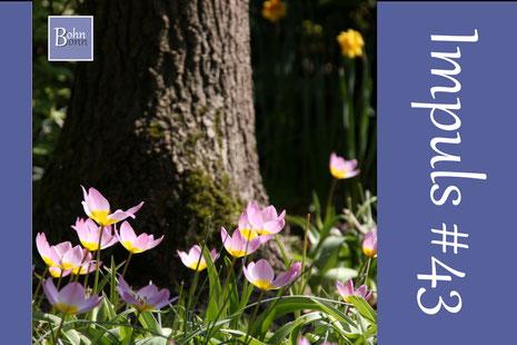 5 aktivierende Fragen zum Frühling
