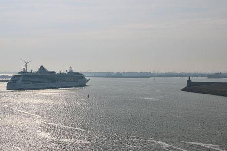 Einlaufen der Serenade of the Sea von RCL in Zeebrügge