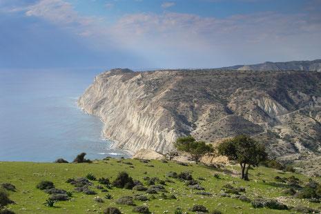 Kreideklippen an der Südküste Zyperns