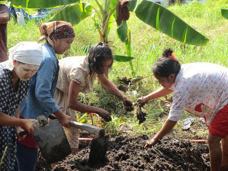 Schulung in den Hausgärten von YUM