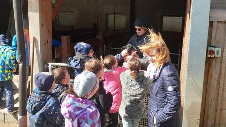 Bauernhofbesichtigung von Fam. Truskaller durch die Nationalparkvolksschule Malta