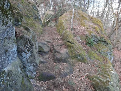 Felsen, ein schmaler Weg im Wald im Harz auf der Teufelsmauer bei Blankenburg.