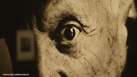 photo d'une photo d'Irving Penn, exposition au Grand Palais, Paris