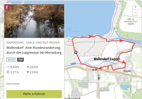 Hundewanderung Wallendorf