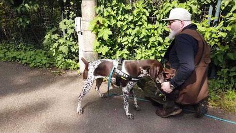 Giftköder Suchhund Denis Marschallek Jagdhund