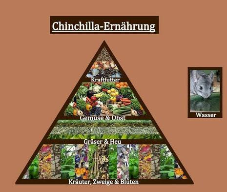 Ernährungspyramide: Wichtigkeit der einzelnen Futterkomponenten