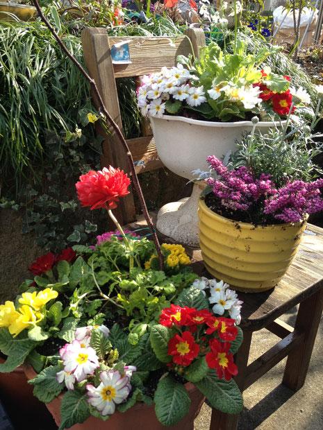 お庭 デッドスペースを生かす