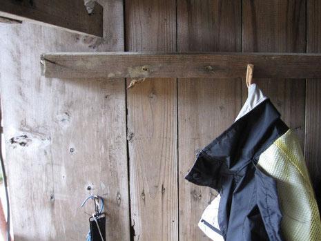 モスラは小屋の軒下、作業服を掛ける角材下にずっといた。真ん中上、角材の下がサナギ。
