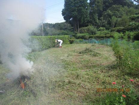 刈って1日置いた草は、乾燥していて燃えやすい。