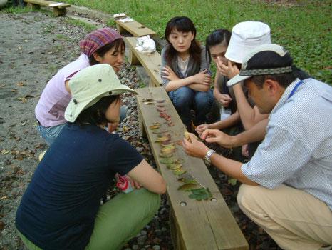 「インタープリター」を知ることで、自然に関わる仕事に興味をもつきっかけになります。