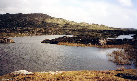 Im Connemara - Moor, Co. Galway