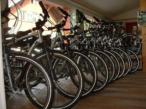 E-Bike und E-Mountainbike mieten in Wimmis, Zweisimmen, Lenk, Saanen und Gstaad