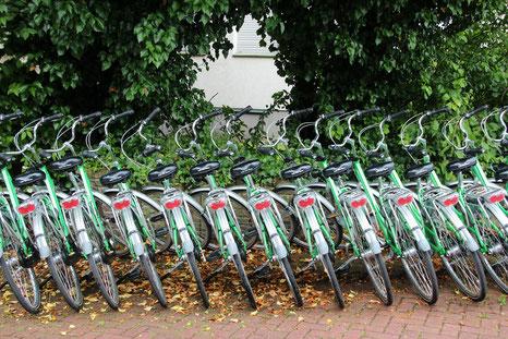 vélos pas cher sortie d'usine