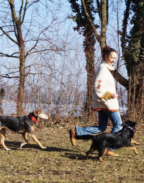 Mensch - Hund - Kommunikation