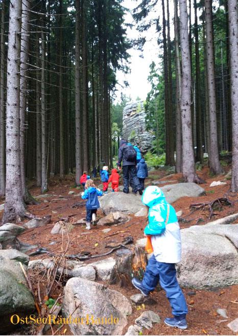 Auf dem Weg zu den Schierker Feuerstein - Klippen: kurze Wanderund mit vielen Klettermöglichkeiten