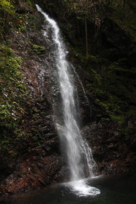 払沢の滝 この角度から見える一段目は落差26m 全体では60mにもなる