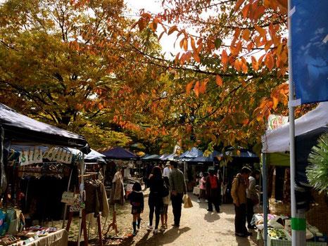 2013年11月9日 京都 平安楽市 岡崎公園 紅葉がきれいでした