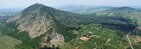 Villány, mountain Szársomlyó