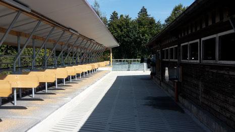 Anbau Laufhof mit Außenliegeboxen, Hof Ganal, Familienbetrieb, TIerwohl