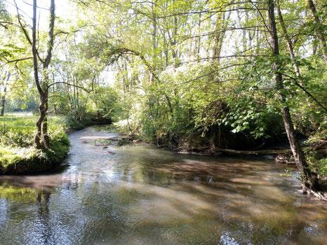 la-Brenne-à Chançay-AOC-Vouvray-Touraine-Vallée-de-la-Loire