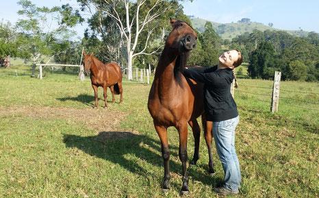 Harmonie, Weiterentwicklung & Vertrauen im Natural Horsemanship