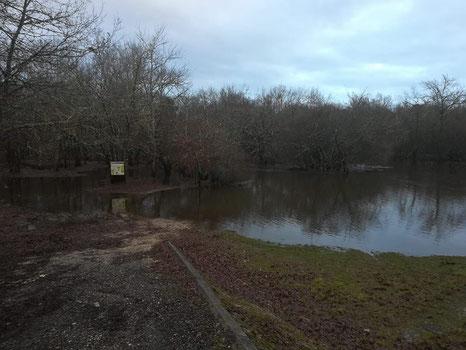 Photographie datée d'hier - Parc Naturel Régional des Landes de Gascogne.