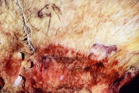 Studienreise Altsteinzeit Bilderhöhlen