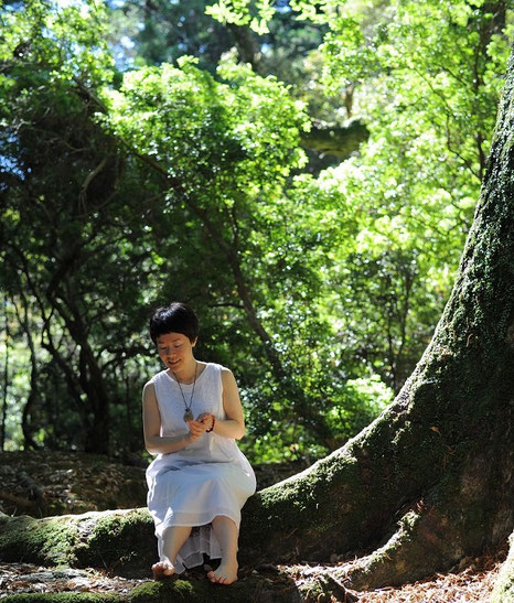 奈良春日大社の森で 2017年6月