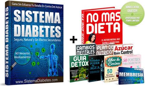 Guía Sistema Diabetes