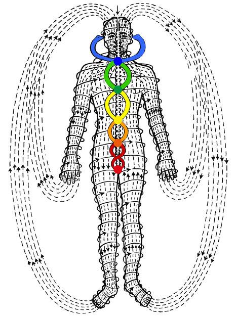 Energieströme des Körpers