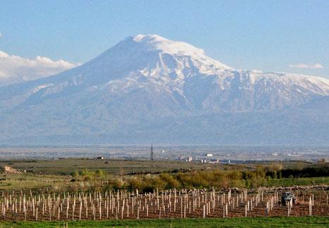 26. April 2017 - Frage an Radio Eriwan: Ist der Berg Ararat das Wahrzeichen Armeniens? Antwort: Im Prinzip ja, doch er liegt in der Türkei.