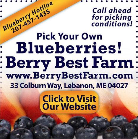 "Web ad appearing on ""The Lebanon Voice"" website, Lebanon, Maine"