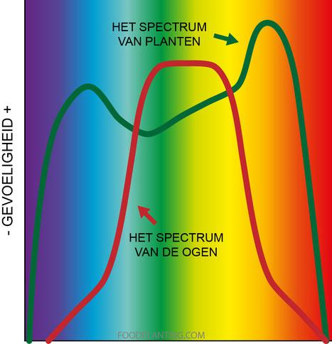 lichtspectrum