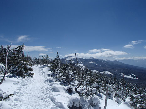 縞枯山 雪山入門 登山 講習 ガイド