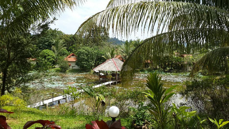 Bungalows resort for sale in Khao Lak