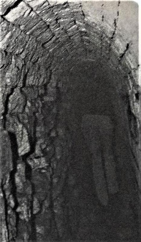 maisons-laffitte souterrain du chateau