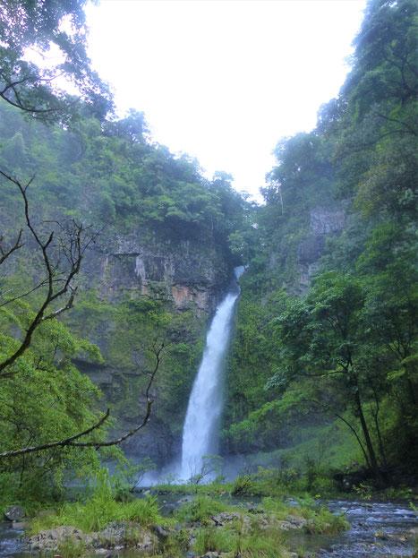 Nandroya Falls, 30 m de haut !