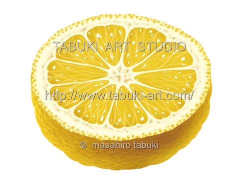柚子 ユズ ゆず イラスト レンタル 商用利用 くだもの 柑橘類 薬味
