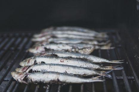 Minimalist Biohacker Fish Natural Supplements