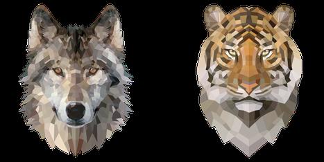 Bild von Wolf und der Tiger.  Beides sind Raubtiere, aber unterschiedlicher Herkunft.
