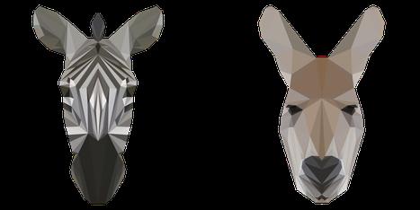 Bild von Zebrakopf und Kängurukopf.  Beide haben Ähnlichkeit, aber sind unterschiedlicher Herkunft.